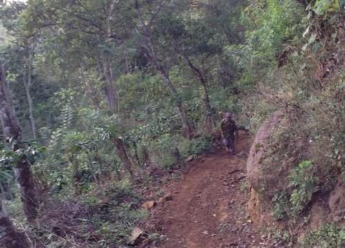 Pendampingan Petani Kopi di Gunung Arjuna Malang