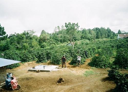 Cerita Dari Sumatra Utara.