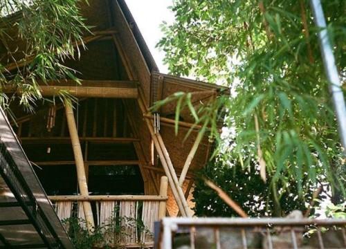 Mimpi Rumah Tumbuh